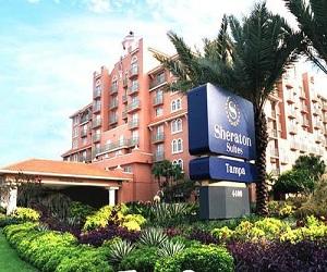 Sheraton Suites Florida Airport Westshore